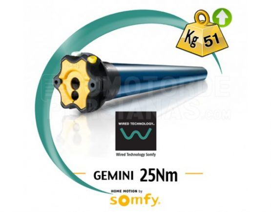 Motor Somfy via cable GEMINI 25Nm